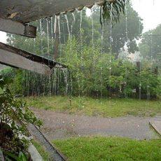 Có nên sử dụng nước mưa không?