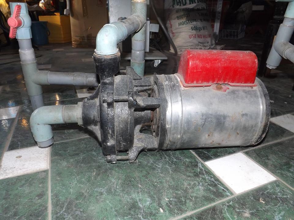 Máy bơm nước không lên nước