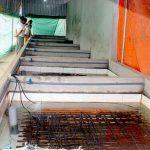 Dùng nước giếng khoan có thể nuôi lươn trong bể không bùn được không?